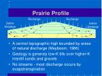 prairie profile