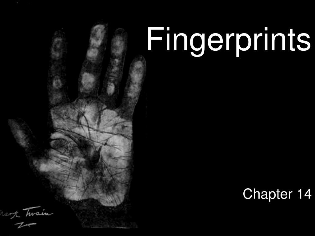 fingerprints l.