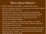more about melanin
