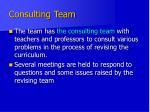 consulting team