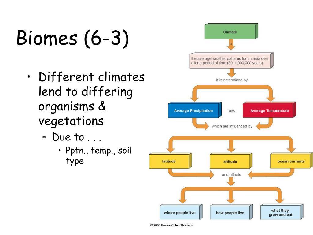 biomes 6 3 l.