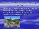 stay cool and get water any way you can