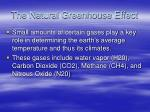 the natural greenhouse effect38