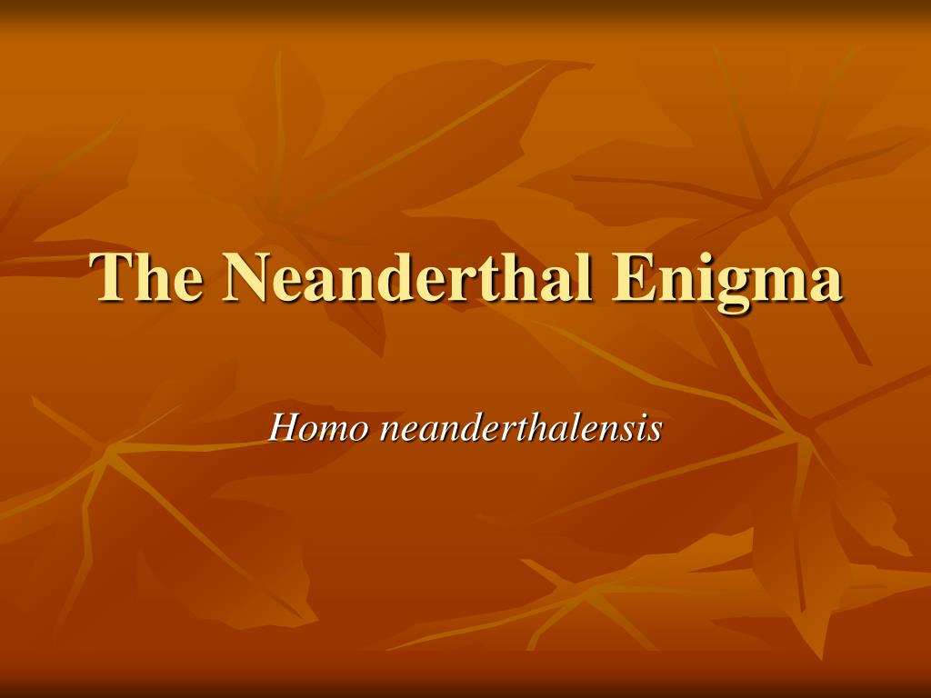 the neanderthal enigma l.