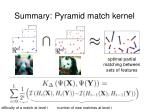 summary pyramid match kernel