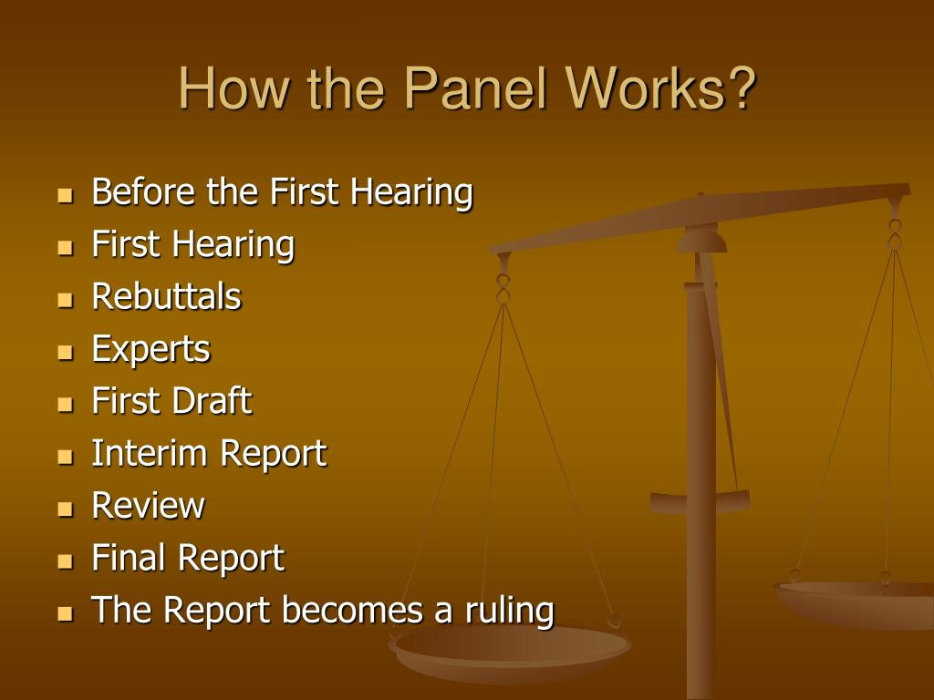 How the Panel Works?