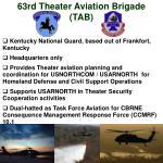 63rd theater aviation brigade tab