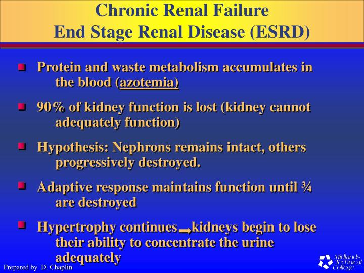 the pathophysiology of acute renal failure questions Acute renal failure, sometimes referred to as acute kidney failure, arises when the kidneys are unable to perform their main function which is to eliminate all acute renal failure pathophysiology includes tubular, vascular and glomerular dysfunction acute renal failure symptoms and effects may vary in.