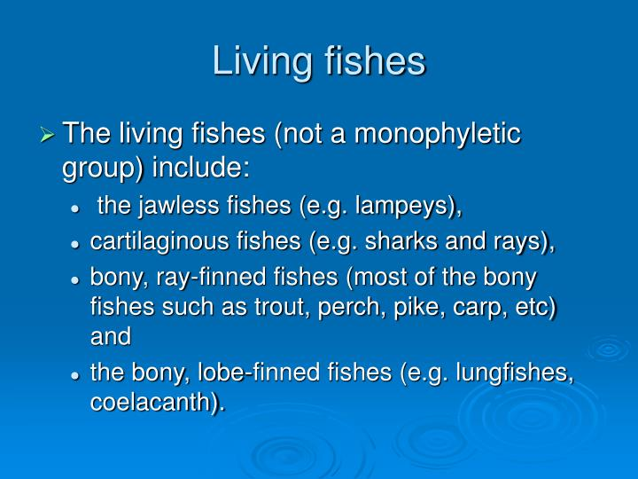 living fishes n.