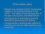 protrusible jaws