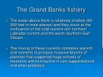 the grand banks fishery113