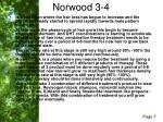 norwood 3 4