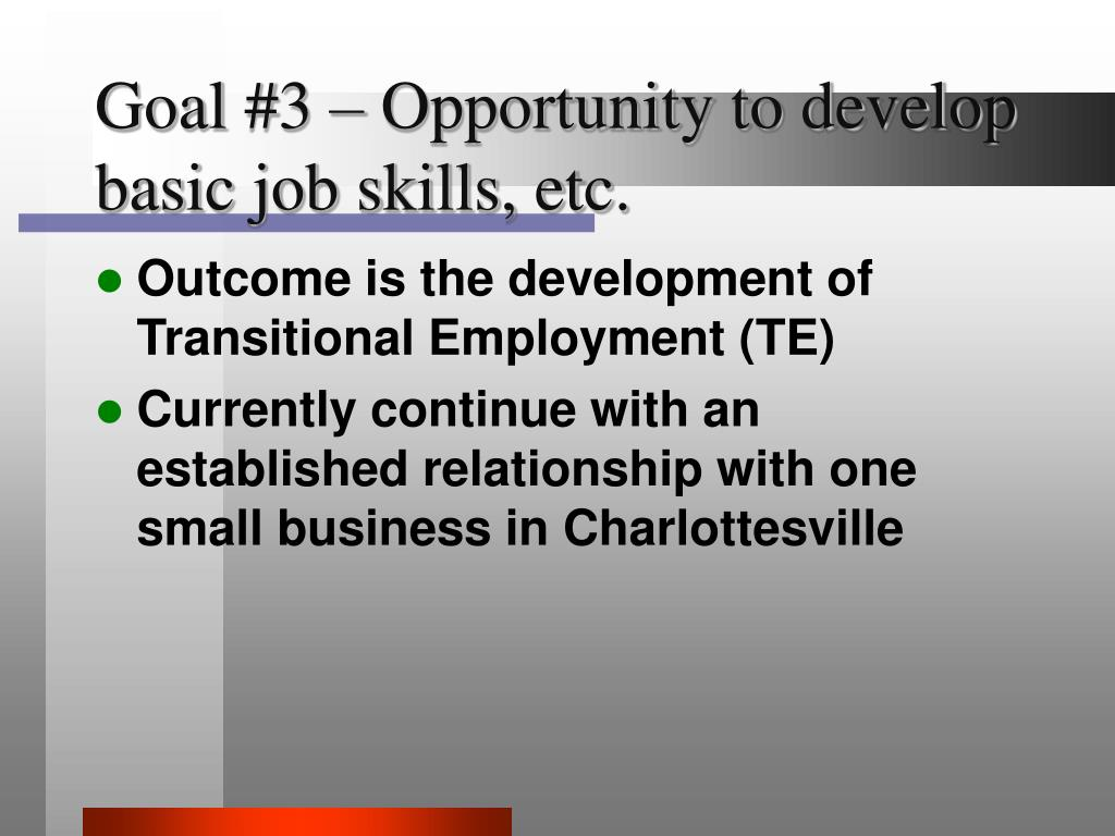 Goal #3 – Opportunity to develop basic job skills, etc.
