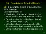 soil foundation of terrestrial biomes