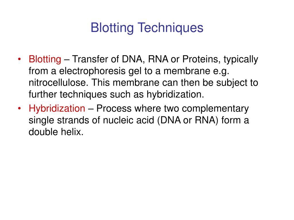 Blotting Techniques