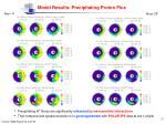 model results precipitating proton flux