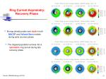 ring current asymmetry recovery phase
