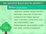 birke inspiration