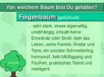 feigenbaum gef hlvoll