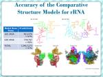 accuracy of the comparative structure models for rrna