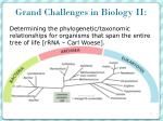grand challenges in biology ii