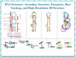 rna structure secondary structure energetics base stacking and high resolution 3d structure
