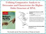 utilizing comparative analysis to determine and characterize the higher order structure of rna