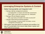 leveraging enterprise systems content