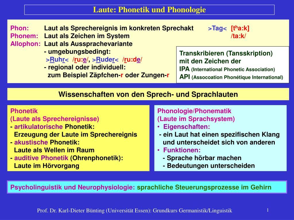 laute phonetik und phonologie l.