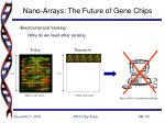 nano arrays the future of gene chips