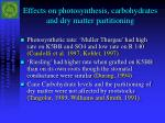 effects on photosynthesis carbohydrates and dry matter partitioning