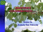rootstock considerations