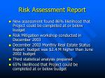 risk assessment report10