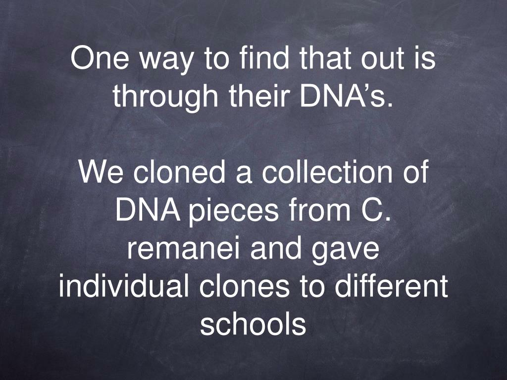 One way to find that out is through their DNA's.