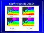 eddy resolving ocean