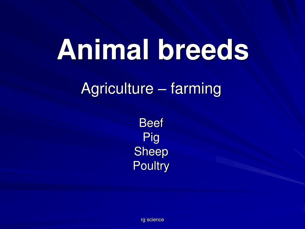 animal breeds l.