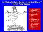 lord nataraja divine dancer in spiritual bliss of perfect yogic balance