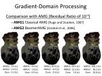 gradient domain processing33