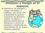 amenazas y riesgos en el ambiente