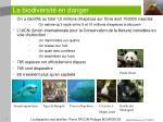 la biodiversit en danger