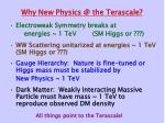 why new physics @ the terascale