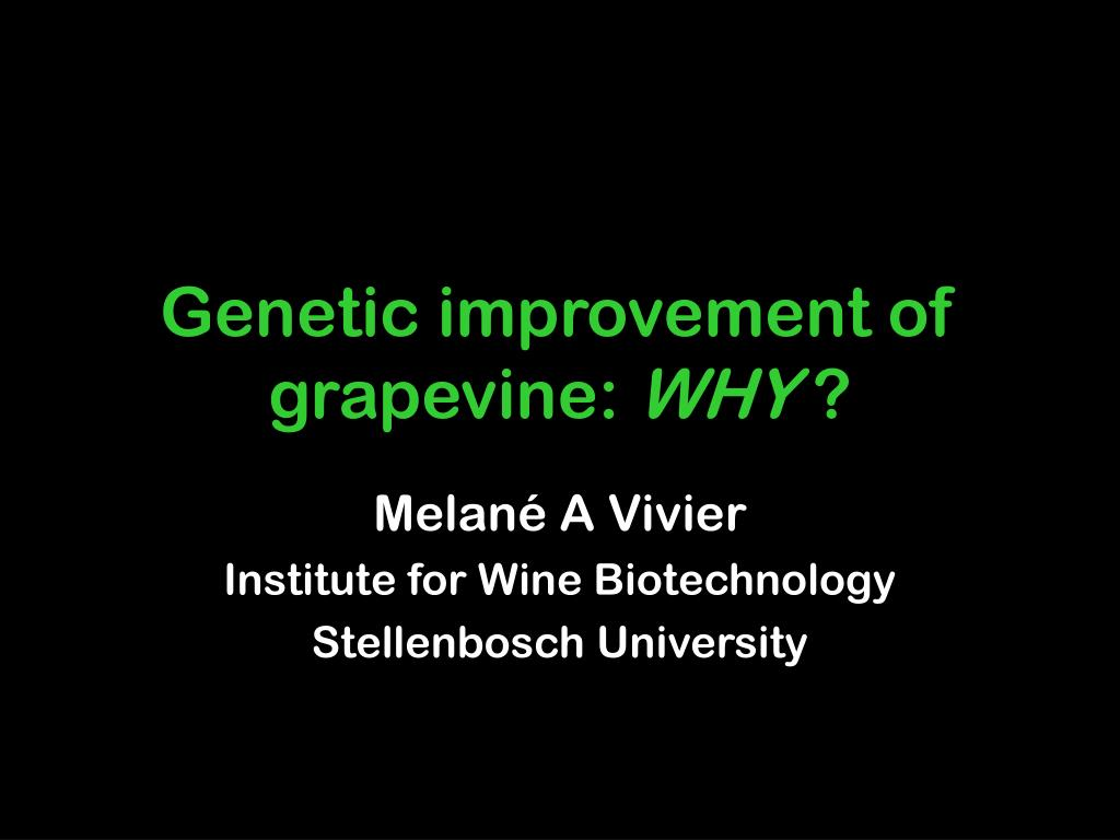 genetic improvement of grapevine why l.