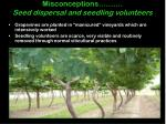 misconceptions seed dispersal and seedling volunteers