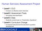 human services assessment project