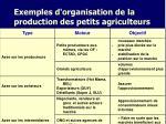 exemples d organisation de la production des petits agriculteurs