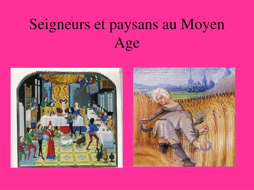 seigneurs et paysans au moyen age l.