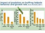 impact of predation on bullfrog tadpole behavior and growth rate from ricklefs 2001