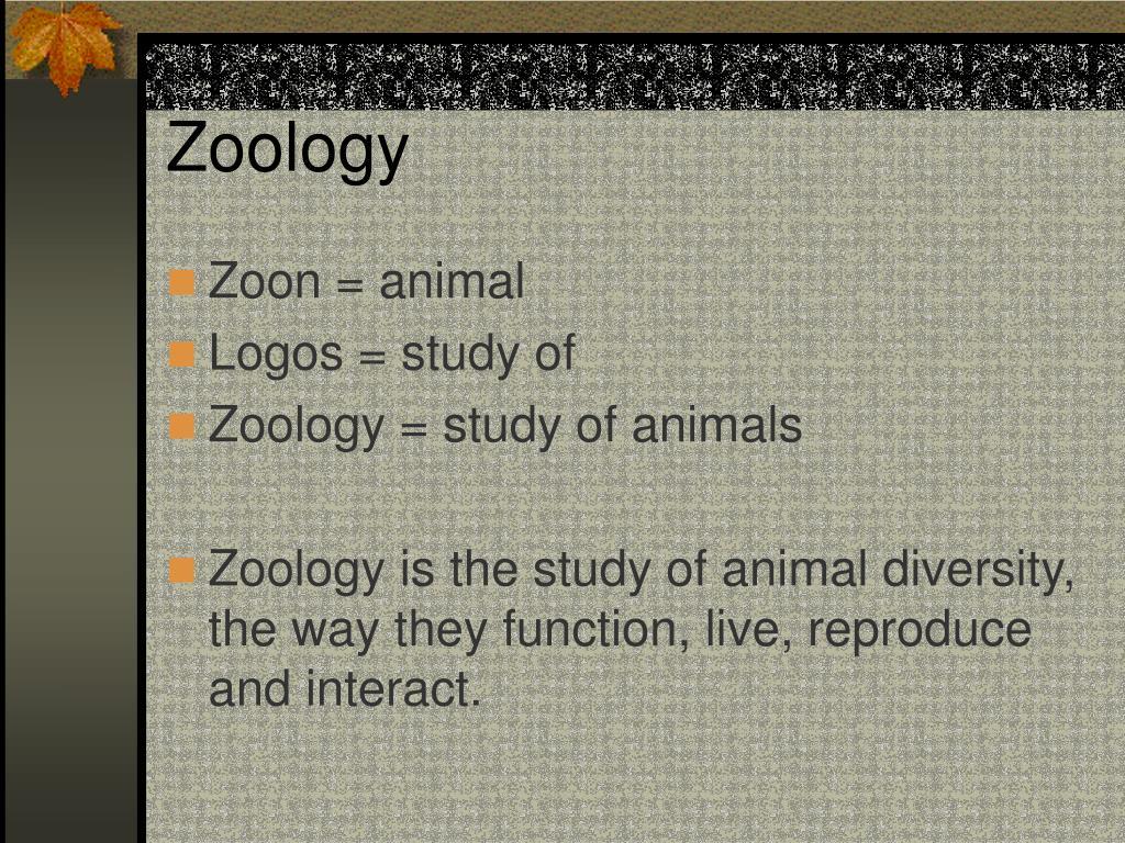 zoology l.