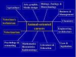 animal oriented careers19