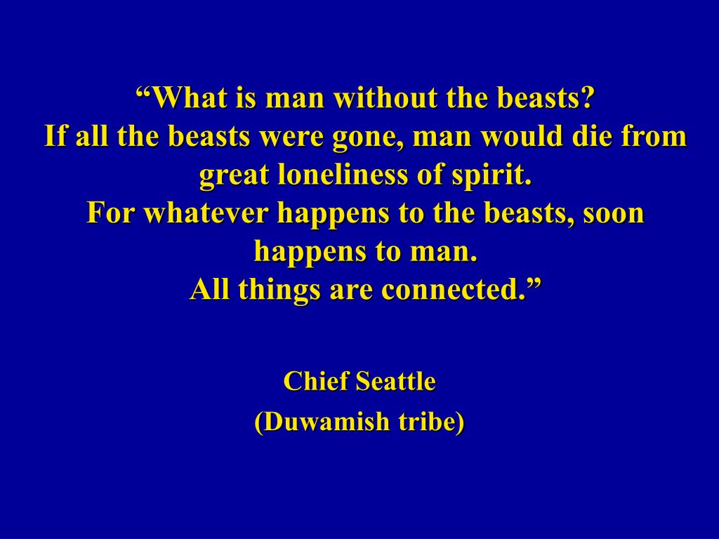 chief seattle duwamish tribe l.